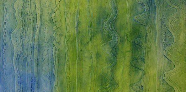 Ausgewachsen I 2014 Öl auf Leinwand 70 cm x 70 cm